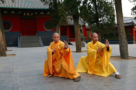 Picture from wikipedia  Chinese martial arts, also referred to as kung fu (/ˈkʌŋ ˈfuː, ˈkʊŋ/) or gung fu (Chinese: 功夫; pinyin: gōngfu) and wushu (simplified Chinese: 武术; traditional Chinese: 武術; pinyin: wǔshù), are a number of fighting styles that have developed over the centuries in China.   The genesis of Chinese martial arts has been attributed to the need for self-defense, hunting techniques and military training in ancient China. Hand-to-hand combat and weapons practice were important in training ancient Chinese soldiers.