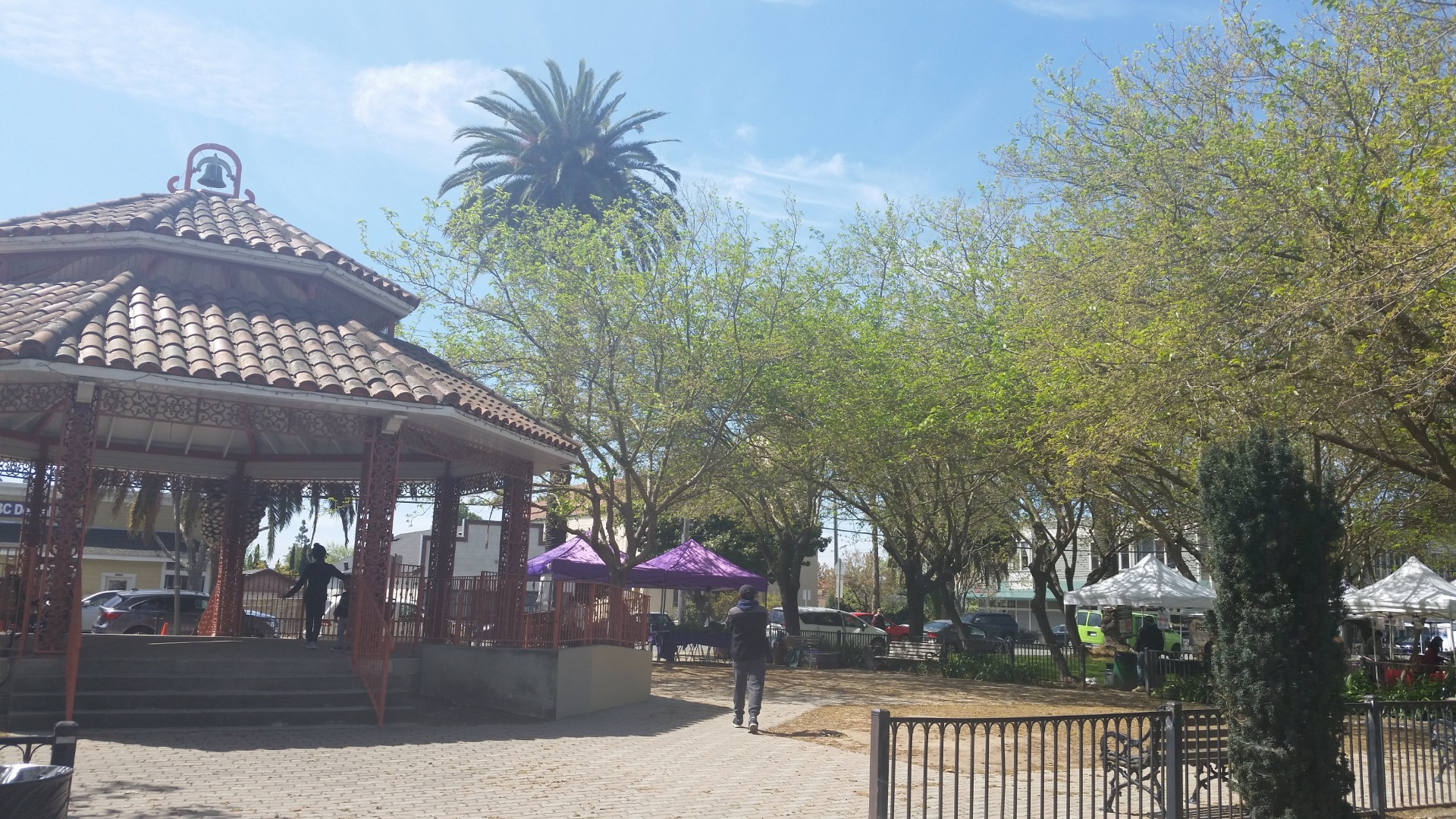 This Farmers' Market is at the Old Alvarado Park. There are a couple of playgrounds and a nice pavillions there. If you have young age kids, they can also play there.